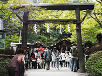 Nonomiya Shrine Pic.